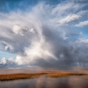 John Whitmarsh | Cape Cod ART