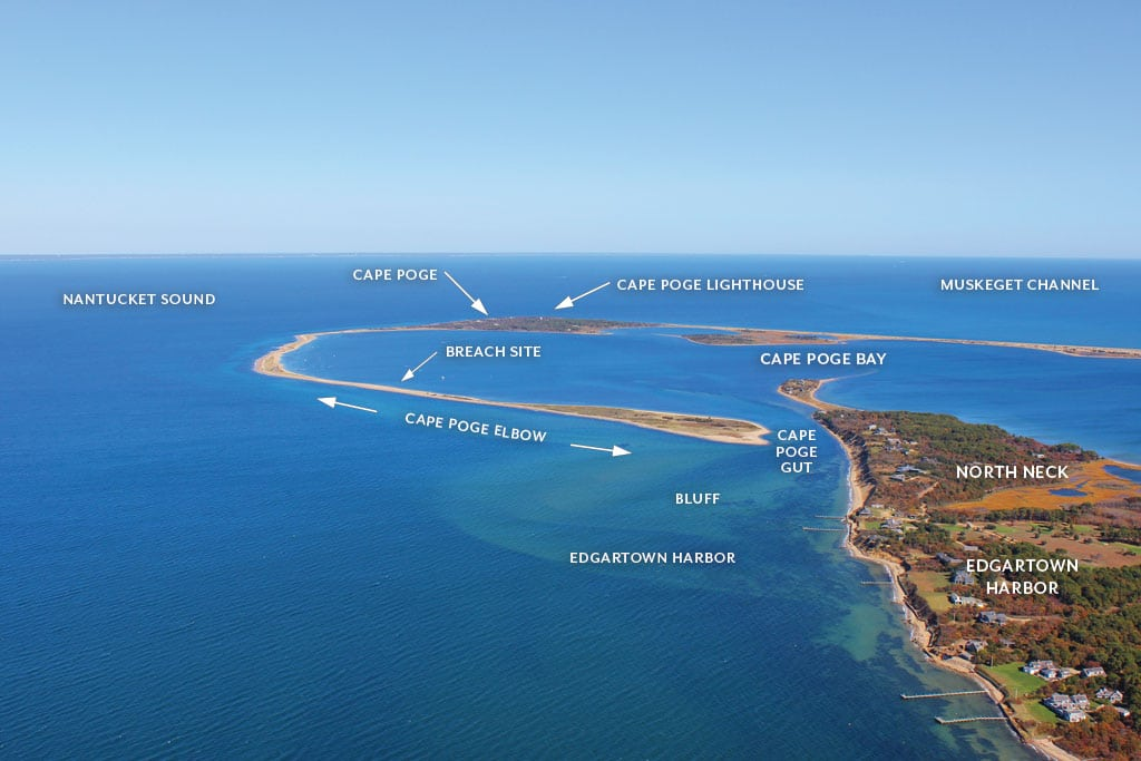 The changing shape of the Cape & Islands: Cape Poge and North Neck, Chappaquiddick, Martha's Vineyard, July 2017 Cape Cod LIFE | capecodlife.com